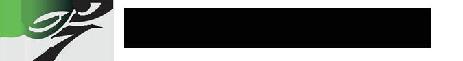 Holly Physiotherapy and Rehabilitation Logo